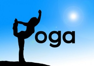 International Yoga Day 21 June 2015